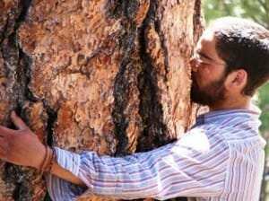 Austin experiencing the sweet vanilla scent of a Jeffery Pine tree.