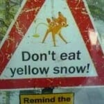 Yellow Snow Tested for Nutrition