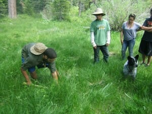 Teens using native grasses to restore wetland damage.
