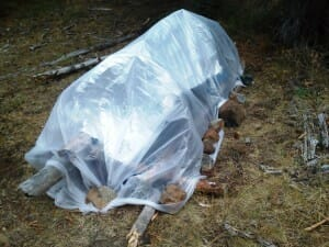 learn how to make emergency survival shelter at Oregon Survival School