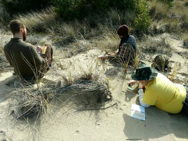 How to track animals. Students studying animal tracks in Dunes.