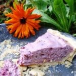 Blue Elderberry Cream Pie.