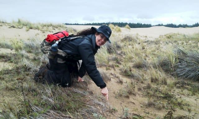 Oregon Survival School. Tracking wildlife on the Oregon Dunes
